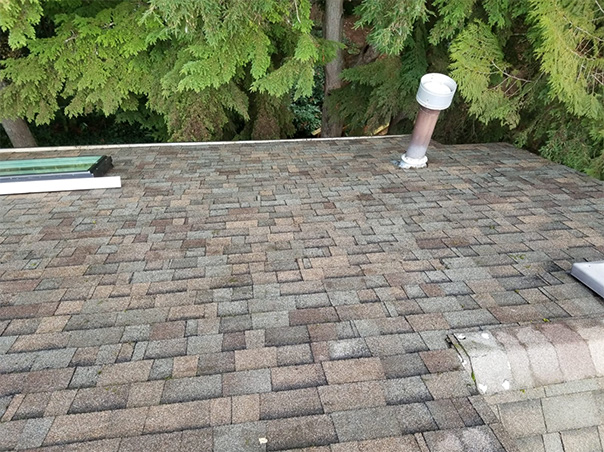 Roof Cleaning Vancouver BC